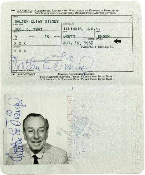 passaporte Walt Disney
